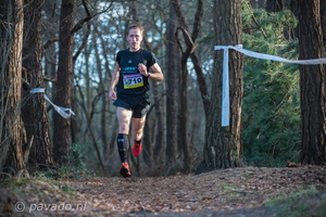 TOF cross 2017